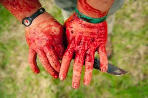 butcher-wild-life-05