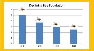Bee%20Graph%20FINAL