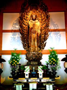 China4Japan1 242